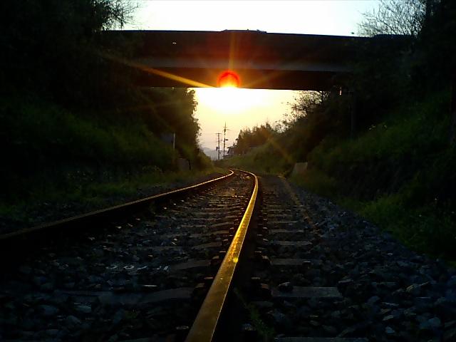 廃線:三木鉄道 廃止21日目