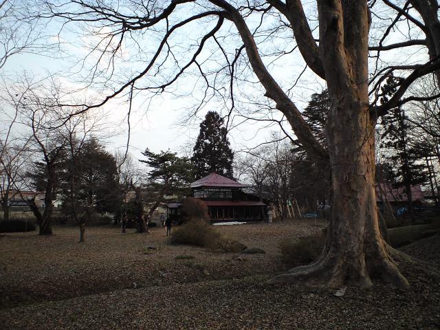 グルメ:メイドといたると時々日本庭園