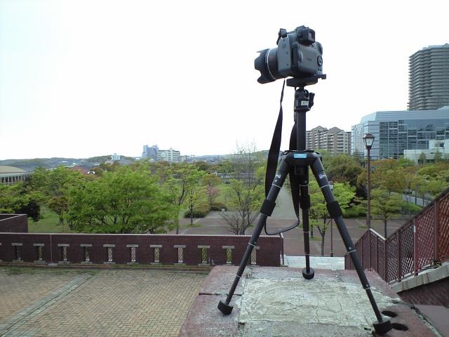 写真:これが2200mm相当の望遠か