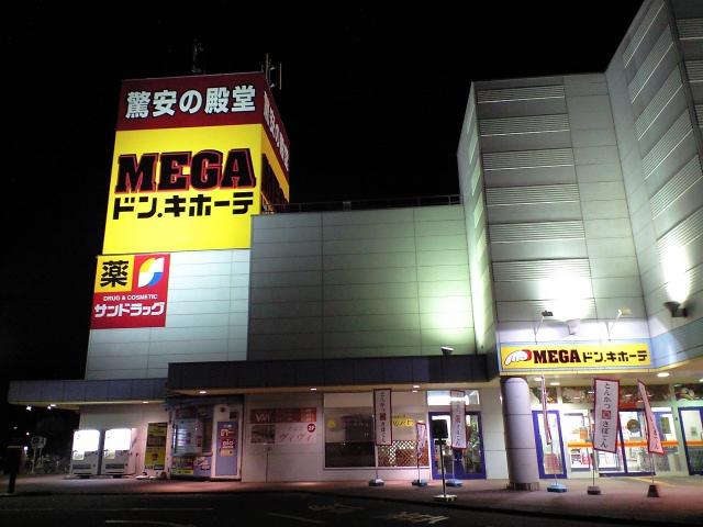 日記:メガ丼