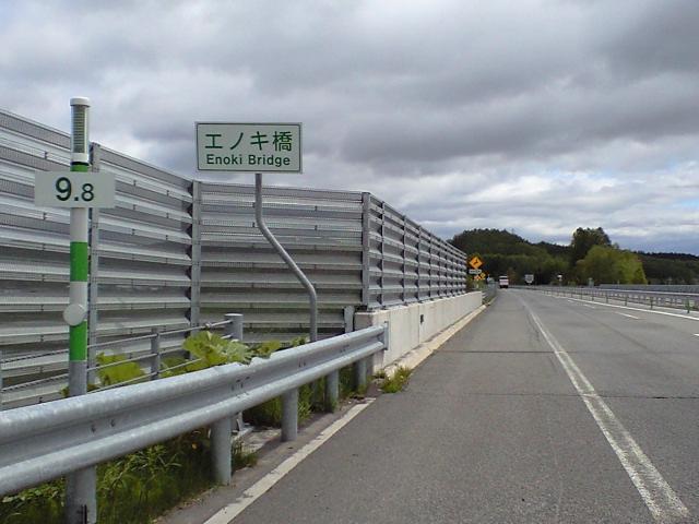 ネタ:キノコの橋