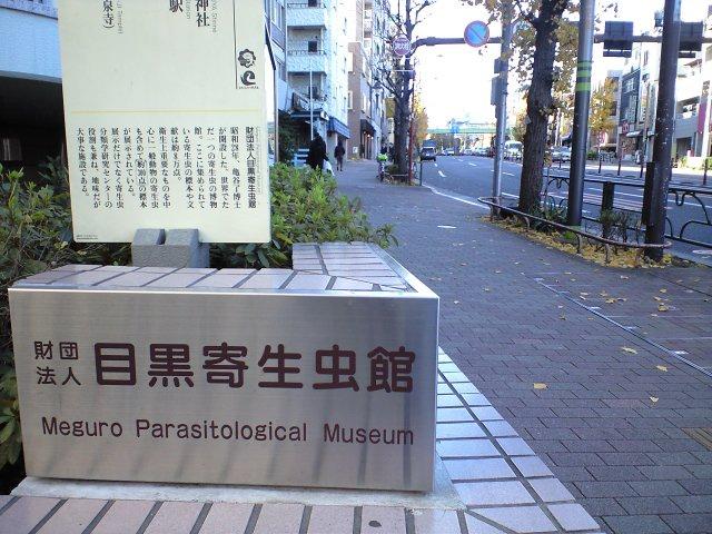 観光:B級観光スポットで寄星蟲を見る(笑)