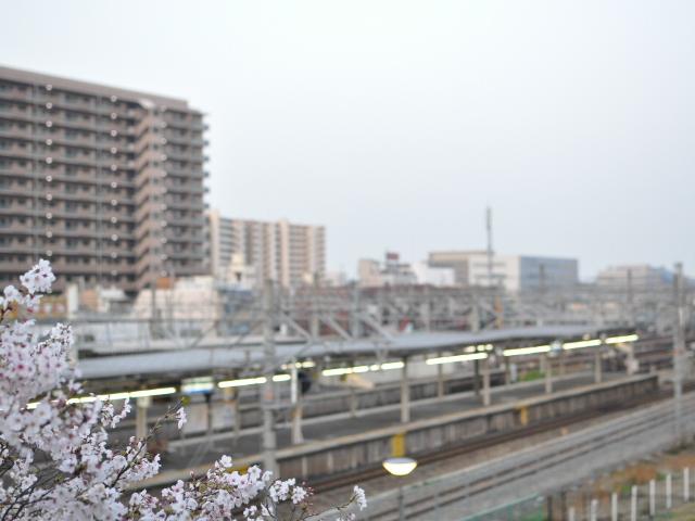 日記:ちょっと福知山線に行ってくる