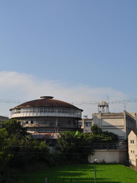 日記:まるい学校、まるい病院、さそう病院