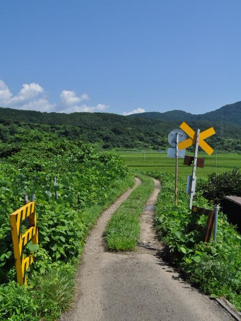日記:前略、いまボクは日本のどこかにいます