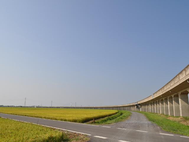 橋脚:これが鹿島のラーメン橋の大カーブ