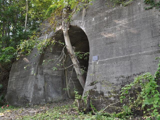 未成線:未成隧道ファンクラブ通信 号外