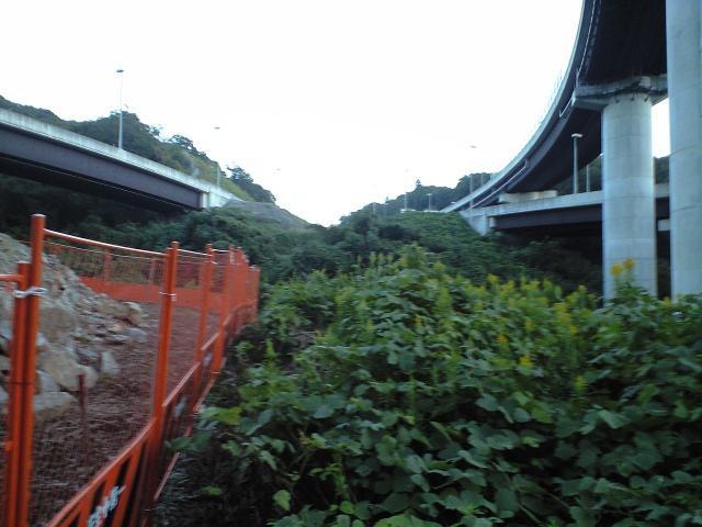 道路:阪神高速白川JCTの未成道調査