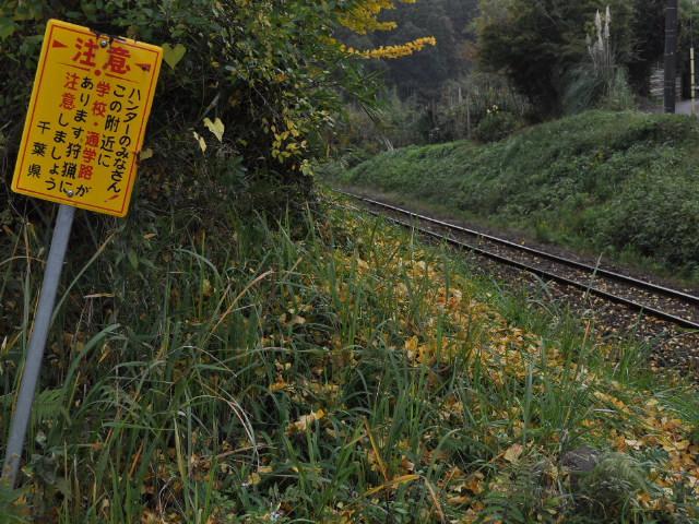 鉄道:落葉の線路