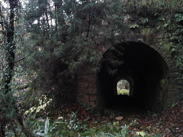 廃線@「キレイな馬蹄形してるだろ、でも死んでるんだぜ」→本題は尾小屋軽便鉄道第1隧道探索です