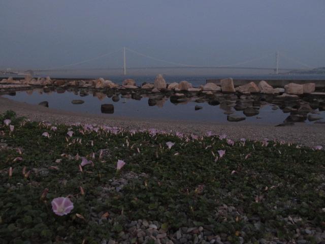 橋梁@あの日見た橋の名前を僕達はまだ知らない (ヒント:明石大橋ではありません)