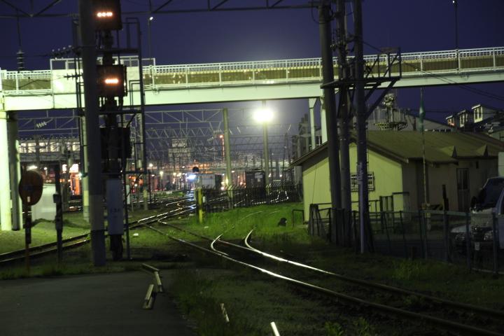 鉄道@軍用未成線を歩く ミリ鉄のロリ鉄クラスタにミリロリ鉄と言うハッシュタグを用意すべきかな? #ロリ鉄