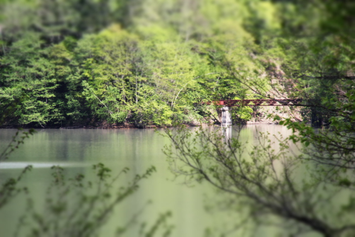 廃線@「炭鉱鉄道の廃駅の背後の湖面に、亡くなった森林鉄道の重構桁(JKT)の姿が写りこんでいるのだ」(悲鳴)