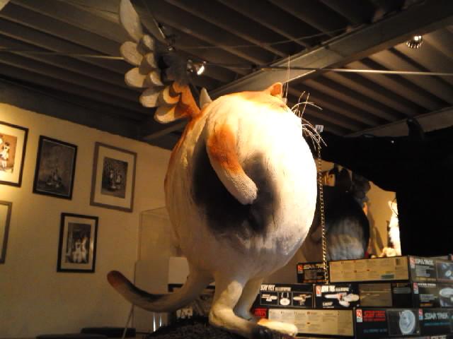 メイド@お月見猫王様の不思議博物館に行ってみた このへんな生き物はまだ日本にいるのです たぶん