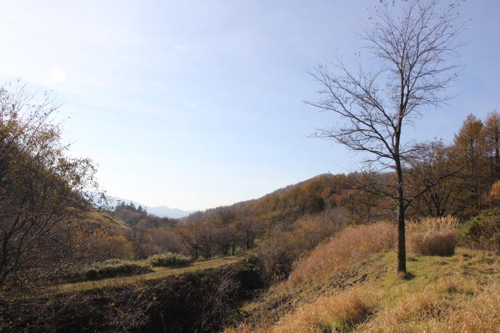 廃線跡で紅葉狩りというのもオツなものです