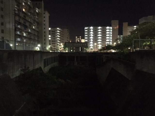 #どぼくカフェ  で見た宇治川暗渠入り口の調整池、写真じゃ暗くて分かりにくいが、川の中が藪になってる